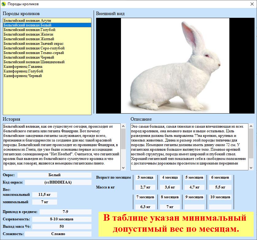 Это изображение имеет пустой атрибут alt; его имя файла - image-10.png